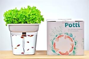 Potti Aquaponics System