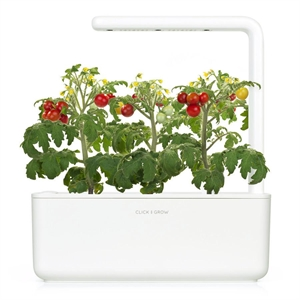 Click and Grow Mini Tomato Refill-3(pcs)