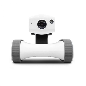 Mobilized Home Monitoring Camera Robot - Appbot Riley