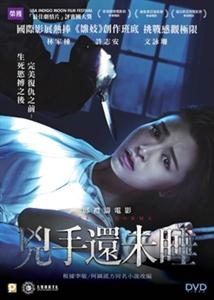 兇手還未睡 NESSUN DORMA (DVD)