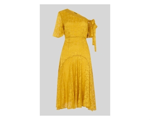 Aina Devore Dress