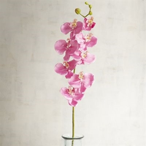 Faux Pink Phalaenopsis Orchid Stem